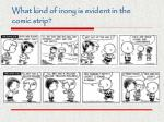 what kind of irony is evident in the comic strip