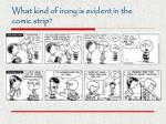 what kind of irony is evident in the comic strip1