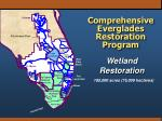 comprehensive everglades restoration program