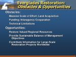 everglades restoration obstacles opportunities