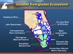 greater everglades ecosystem