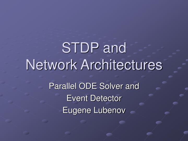 stdp and network architectures n.