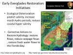 early everglades restoration initiatives