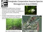everglades cooperative invasive species management area cisma