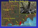 taylor river study area