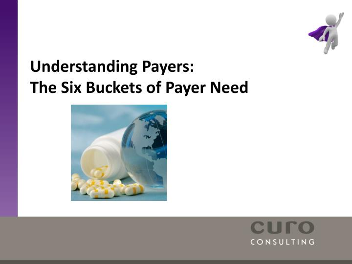 understanding payers the six buckets of payer need n.