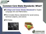 common core state standards what