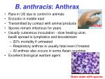 b anthracis anthrax
