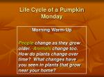 life cycle of a pumpkin monday1