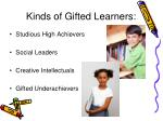 kinds of gifted learners