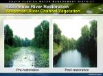 kissimmee river restoration response river channel vegetation