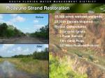 picayune strand restoration