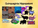 quinquaginta hippopatomi