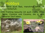 hobbys