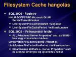 filesystem cache hangol s