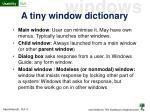 a tiny window dictionary