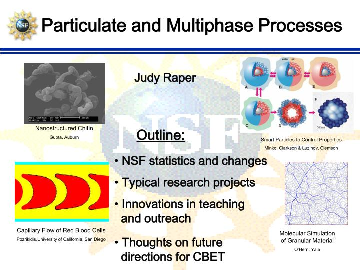particulate and multiphase processes n.
