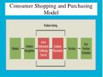 consumer shopping and purchasing model