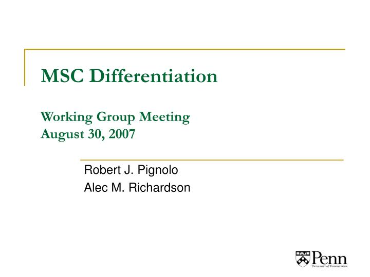 msc differentiation working group meeting august 30 2007 n.