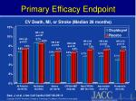 primary efficacy endpoint