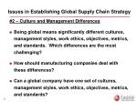 issues in establishing global supply chain strategy