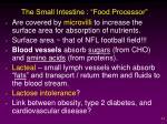 the small intestine food processor2