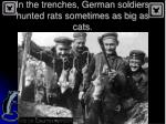in the trenches german soldiers hunted rats sometimes as big as cats