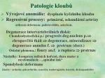 patologie kloub