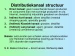 distributiekanaal structuur