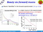 beauty via forward muons