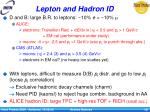 lepton and hadron id