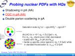 probing nuclear pdfs with hqs1
