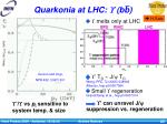 quarkonia at lhc bb