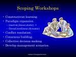 scoping workshops