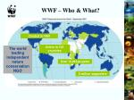 wwf who what
