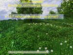 veliki modeli simulacija rastlinskega ekosistema