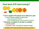 how does atp store energy