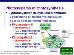 photosystems of photosynthesis