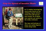 stop the spread of invasive plants