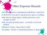 other exposure hazards