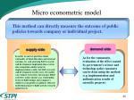 micro econometric model