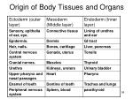 origin of body tissues and organs