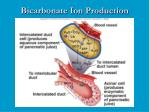 bicarbonate ion production