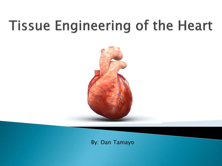 tissue engineering of the heart n.