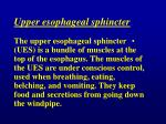 upper esophageal sphincter