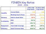 finbin key ratios 2004 2006
