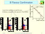b flavour confirmation