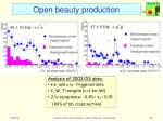open beauty production