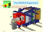 the hera b experiment