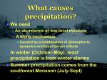 what causes precipitation